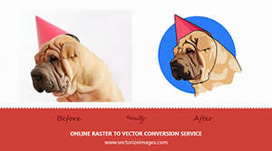 VECTORIZE SIGNS