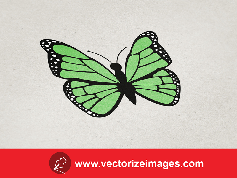 free butterfly vector art